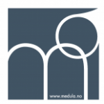 Group logo of Medula Consulting AS